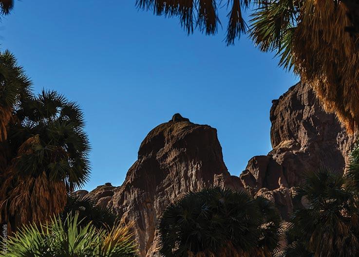The Ennedi Massif, the Sahara's Garden of Eden, Explore Chad