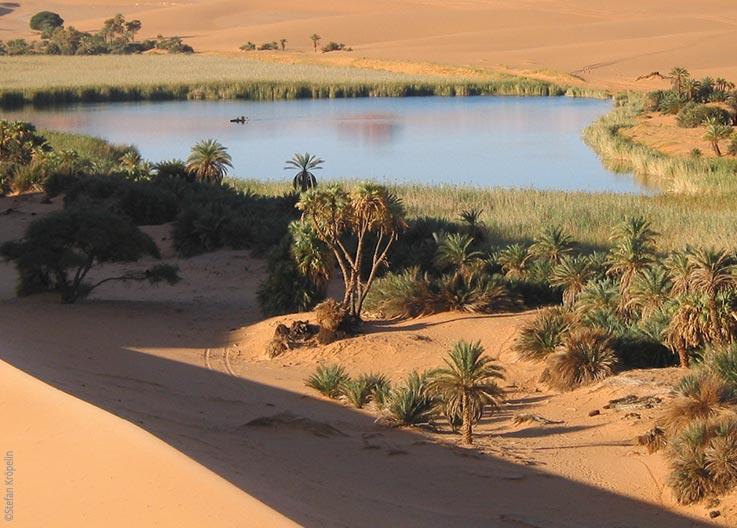 Die Seen von Ounianga, Ounianga Serir, Lac Bokou, Schilflandschaft, Explore Chad
