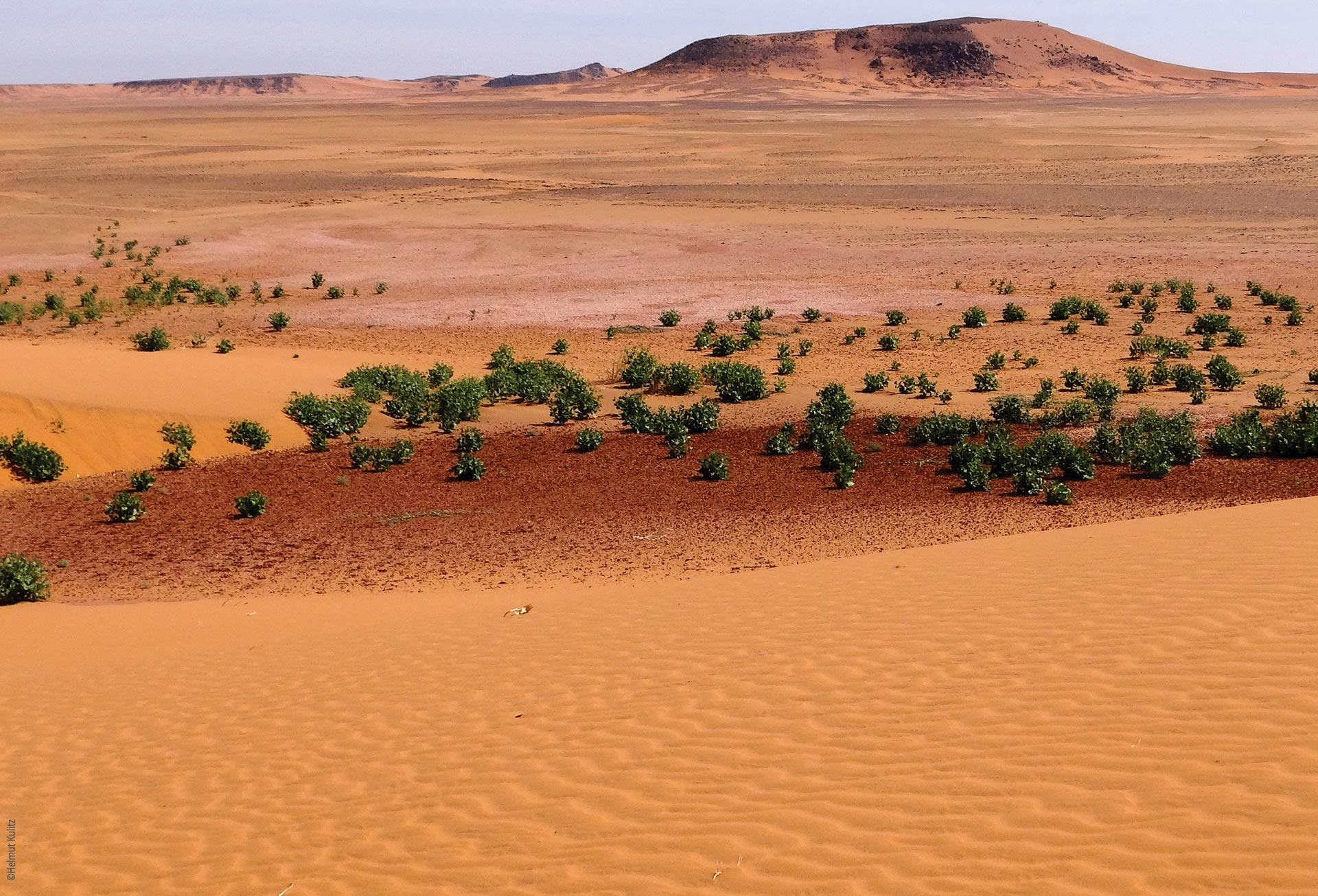 Research and expeditions in nothern Chad, the desert, Explore Chad