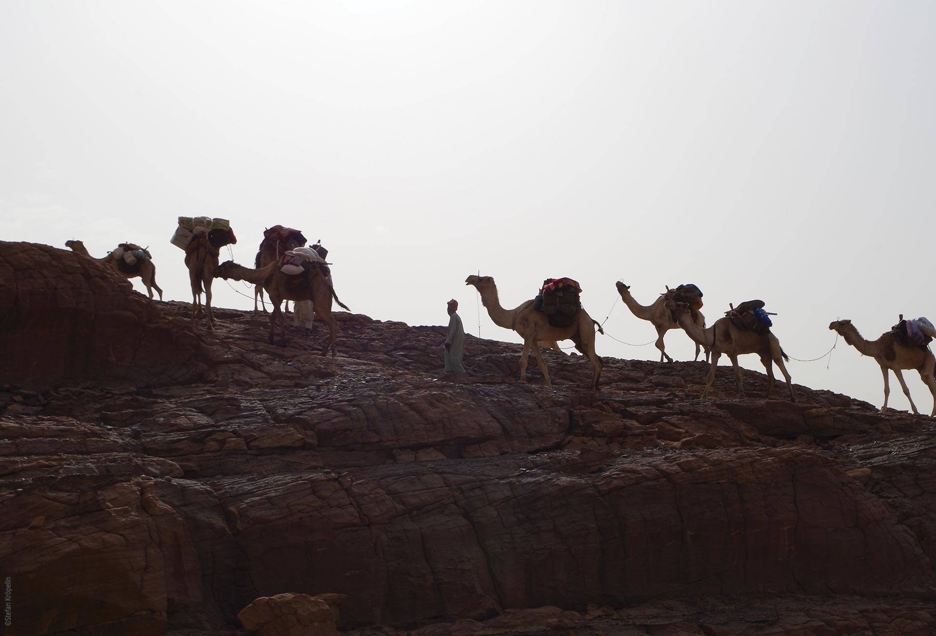 The Tibesti Mountains, expedition, camels as pack animals, Explore Chad